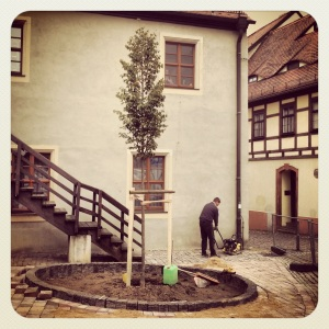 Foto © P. Müller